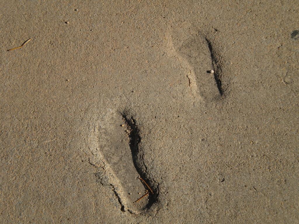 footprints in the sidewalk