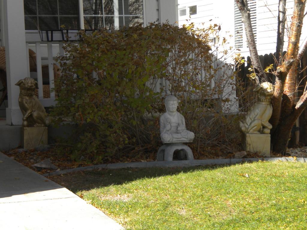 Front yard meditation