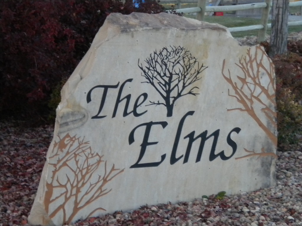 The Elms (northern area)