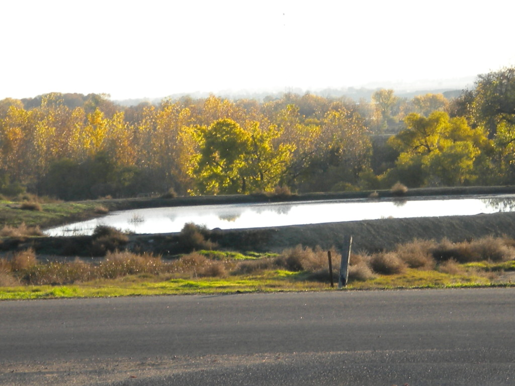 residual flood water