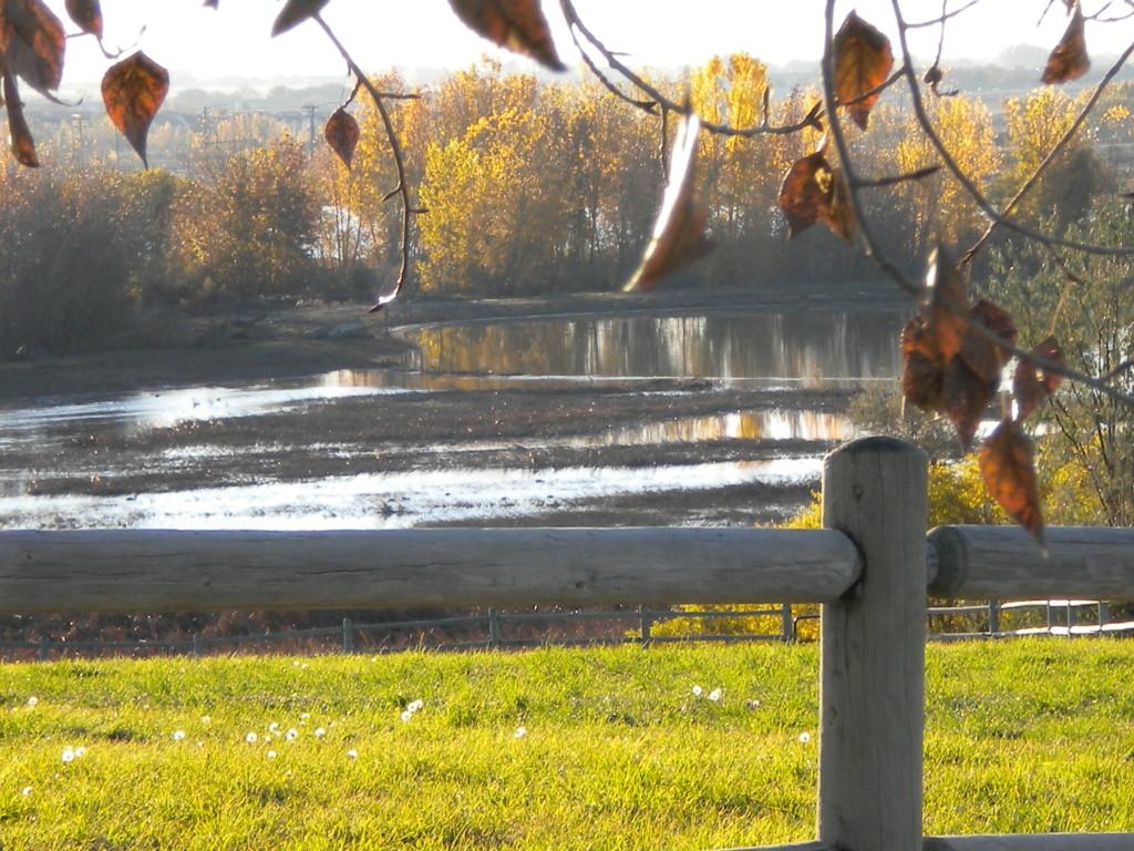 more residual flood water