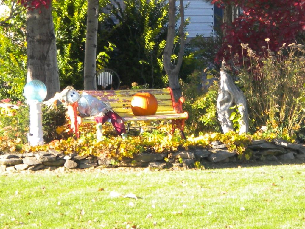 orb, scarecrow, pumpkin, driftwood