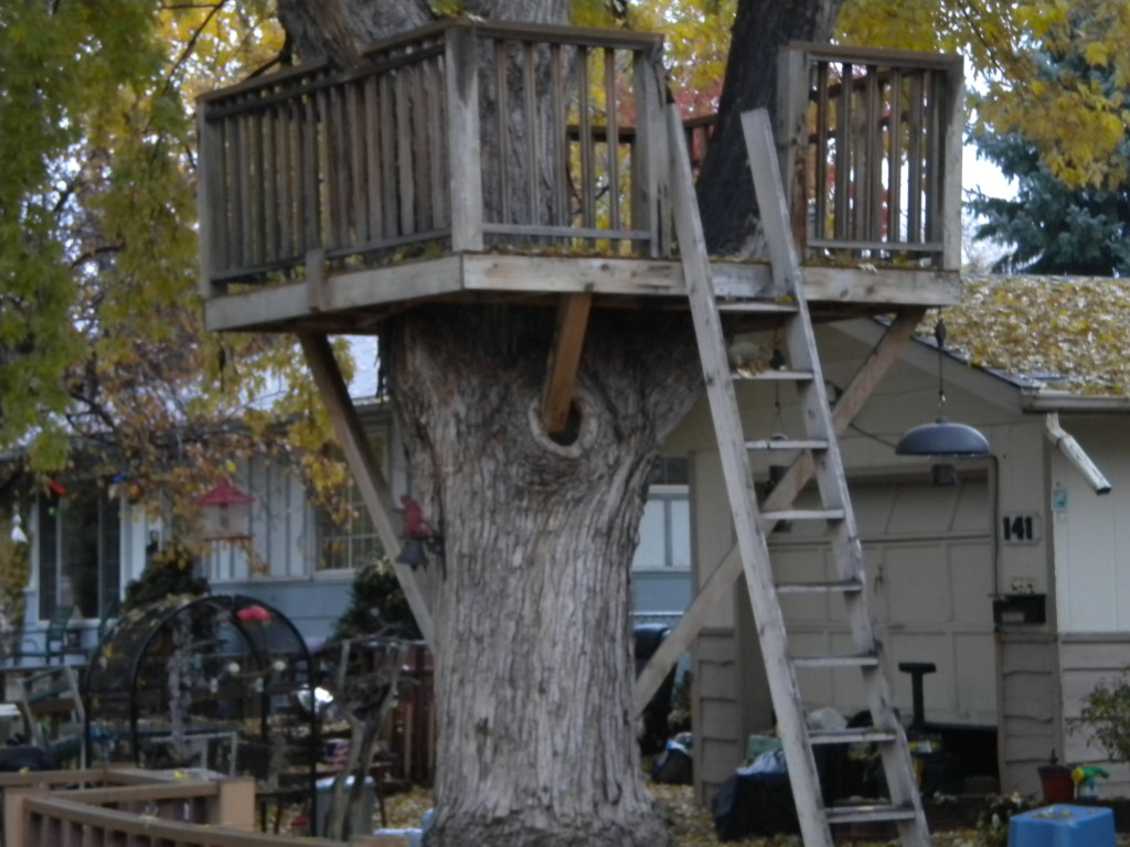 Mega-treehouse