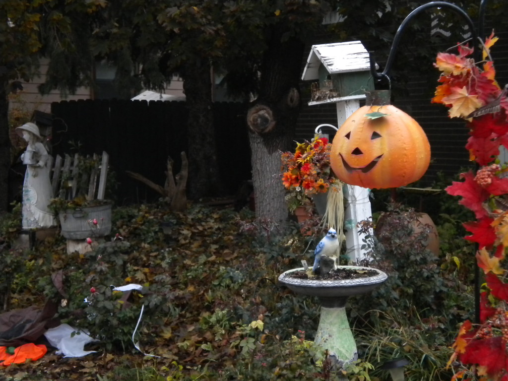 scary front yard