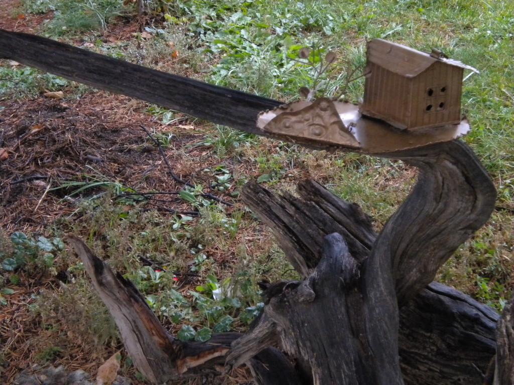 teeny-tiny house