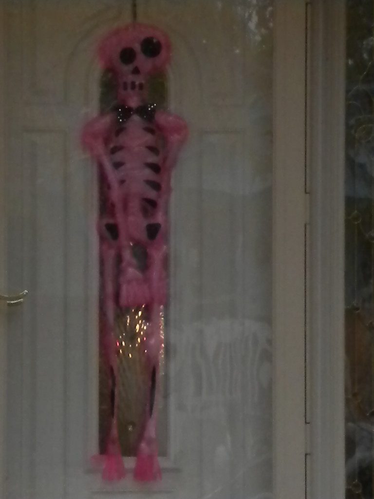 only pink skeleton I remember seeing today