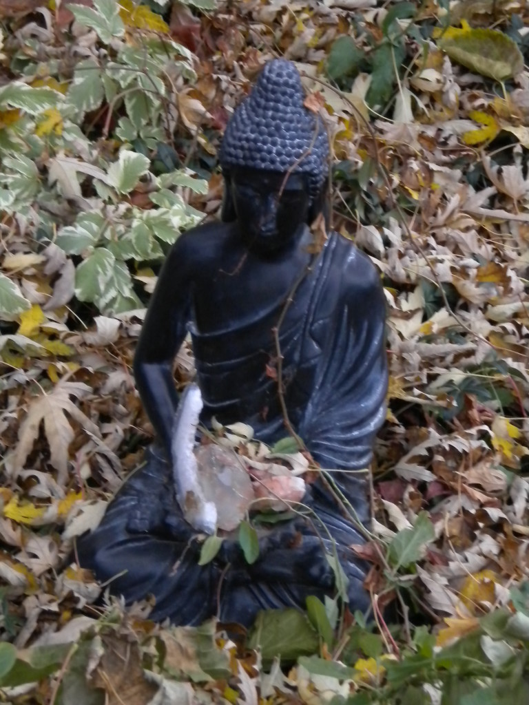 Buddha (with what in lap?)
