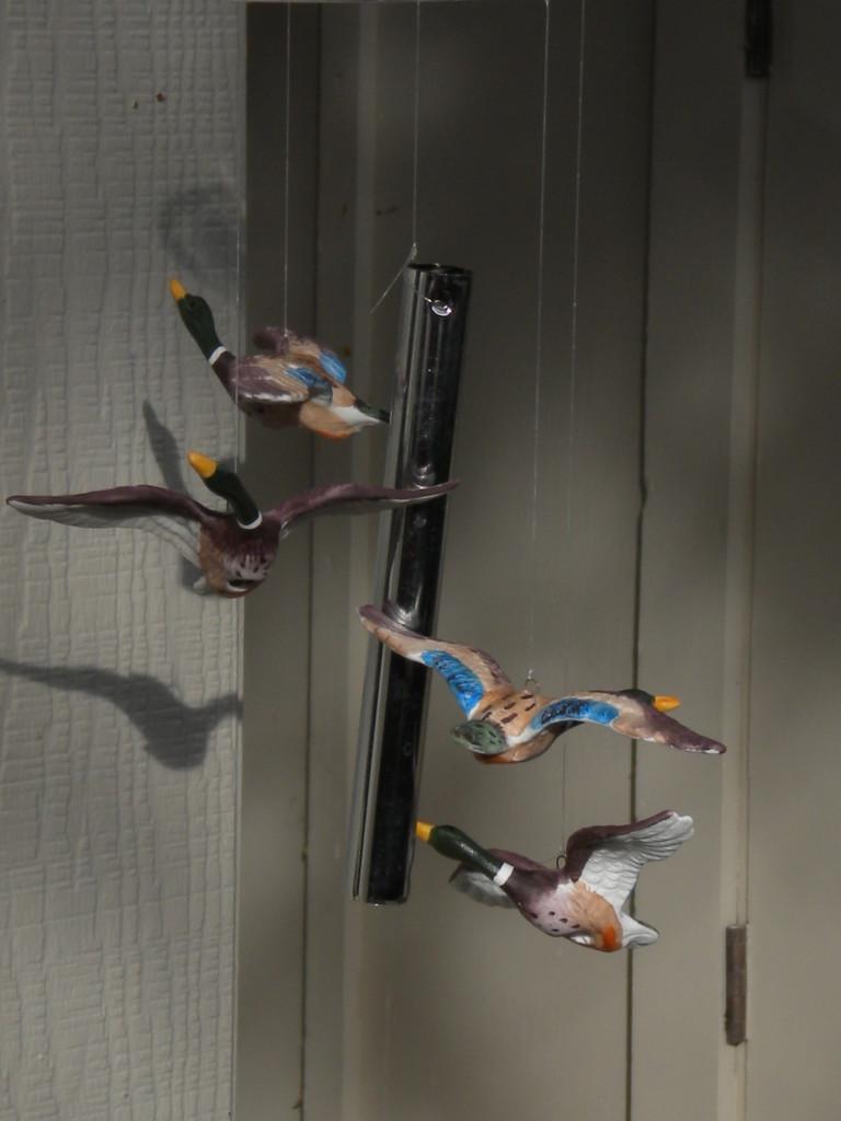 Four Flying Fowls