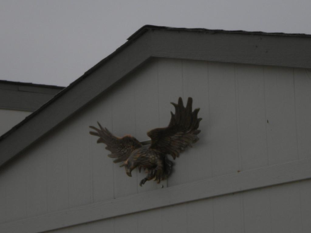 3-D eagle