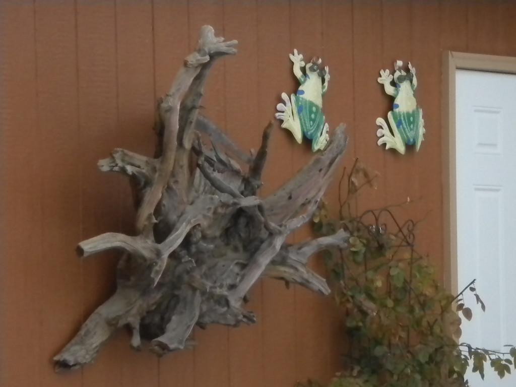 3-D driftwood