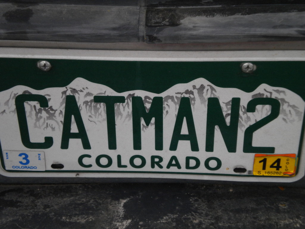 Cat lover license plate # 2