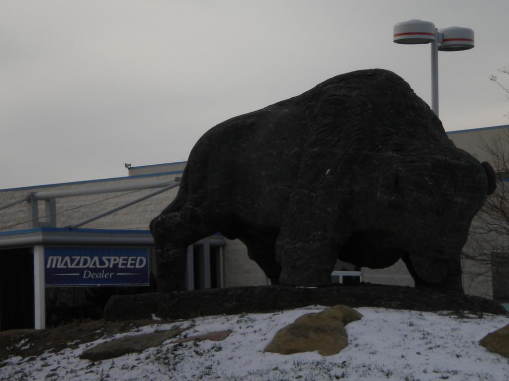 Buffalo statue near entrance to Vista business area