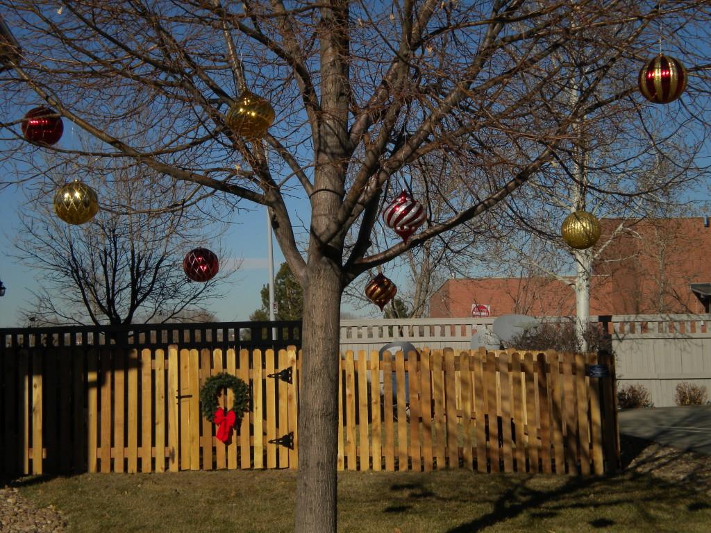 Christmas orbs
