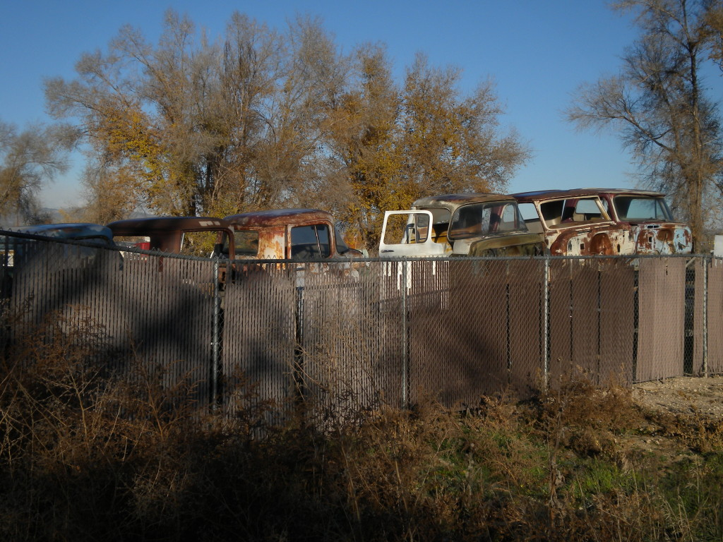 row of junk cars