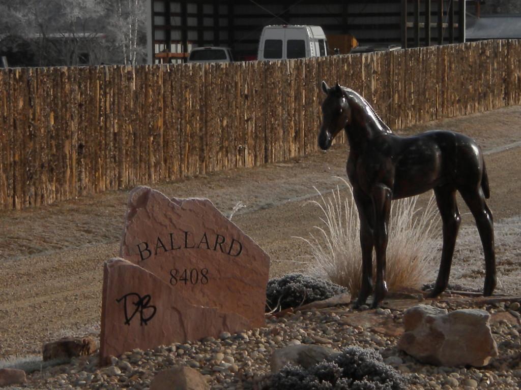 horse at Ballard Farm